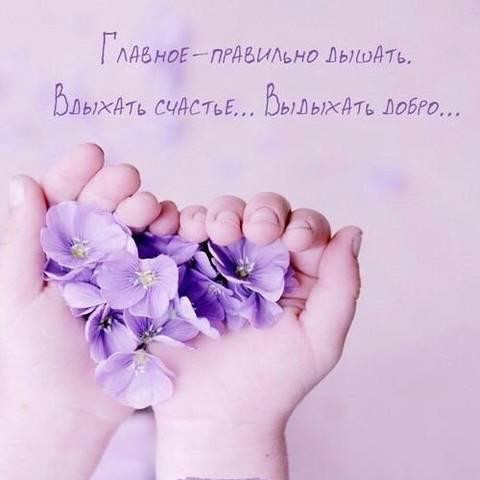 http://s7.uploads.ru/t/M19XN.jpg