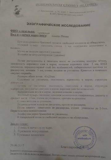 http://s7.uploads.ru/t/M26aG.jpg