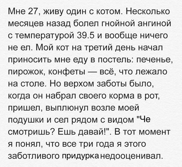 http://s7.uploads.ru/t/MAc0n.jpg