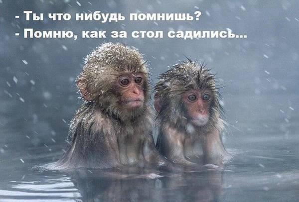http://s7.uploads.ru/t/MC7s4.jpg