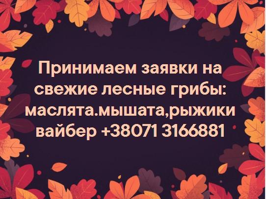 http://s7.uploads.ru/t/MEU0c.jpg