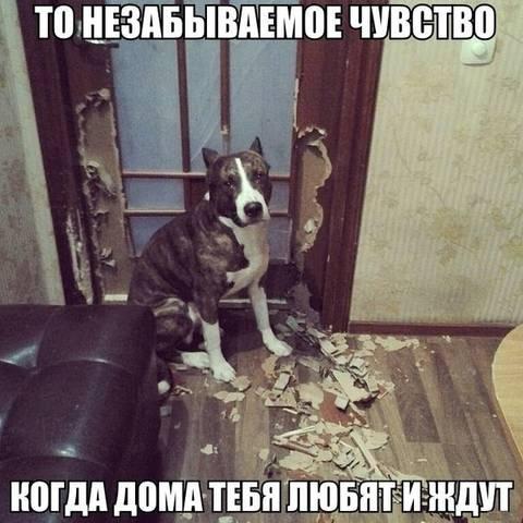 http://s7.uploads.ru/t/MO8zg.jpg