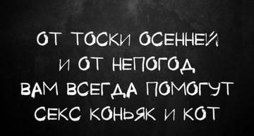http://s7.uploads.ru/t/MQiSq.jpg