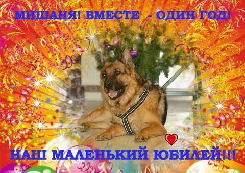 http://s7.uploads.ru/t/Mjkcq.jpg