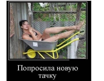 http://s7.uploads.ru/t/Mjpmh.jpg