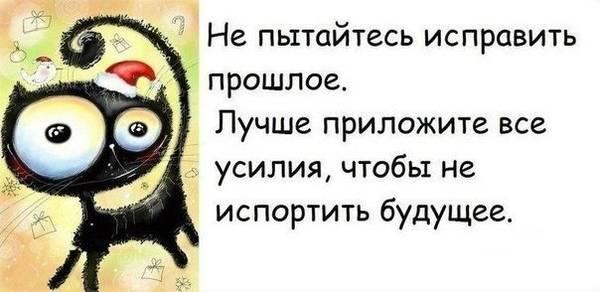 http://s7.uploads.ru/t/MnVuL.jpg