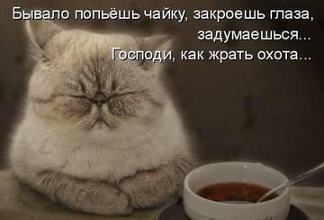 http://s7.uploads.ru/t/MunKc.jpg
