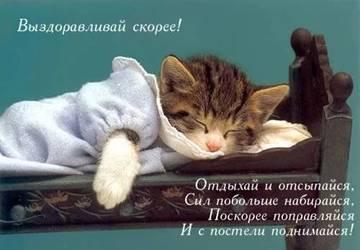 http://s7.uploads.ru/t/MyxXu.jpg