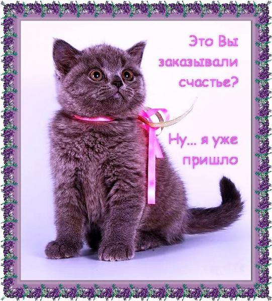 http://s7.uploads.ru/t/N0UFs.jpg