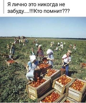 http://s7.uploads.ru/t/N0VDJ.jpg