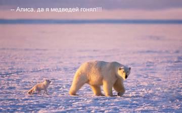 http://s7.uploads.ru/t/N3GLS.jpg