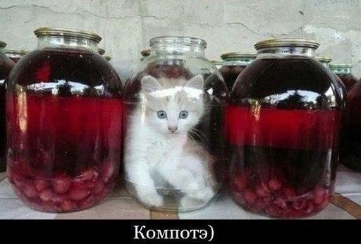 http://s7.uploads.ru/t/N3cSA.jpg