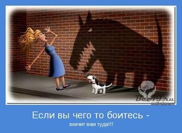 http://s7.uploads.ru/t/N6lmO.jpg