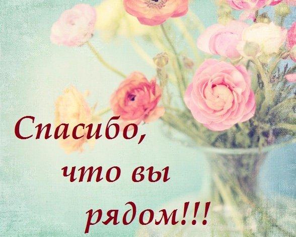 http://s7.uploads.ru/t/NCQJO.jpg