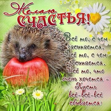 http://s7.uploads.ru/t/NHkdq.jpg