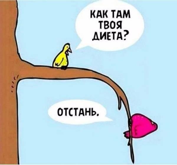 http://s7.uploads.ru/t/NpS9A.jpg