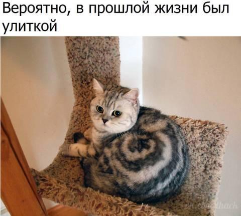 http://s7.uploads.ru/t/OD0tU.jpg