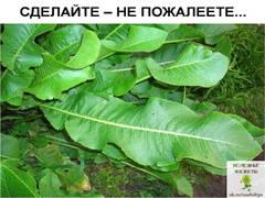 http://s7.uploads.ru/t/OE7wr.jpg