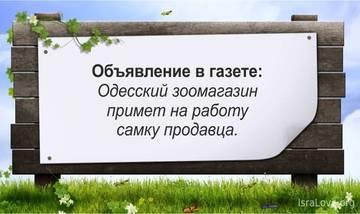 http://s7.uploads.ru/t/OrX5F.jpg