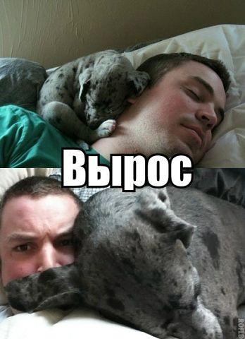 http://s7.uploads.ru/t/OxZfS.jpg