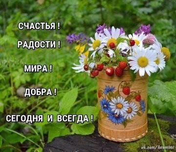 http://s7.uploads.ru/t/PElxR.jpg