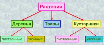 http://s7.uploads.ru/t/PFNkZ.jpg