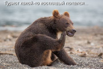 http://s7.uploads.ru/t/PSMa5.jpg