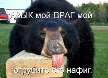 http://s7.uploads.ru/t/PpGh1.jpg