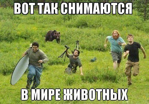 http://s7.uploads.ru/t/PyTEF.jpg