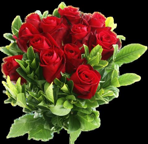 http://s7.uploads.ru/t/Qe4TX.png