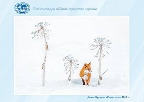 http://s7.uploads.ru/t/QnvSO.jpg