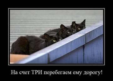 http://s7.uploads.ru/t/Qt0MC.jpg