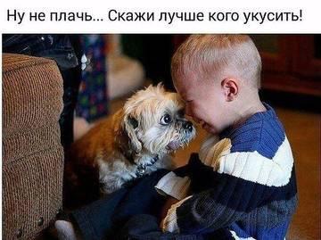 http://s7.uploads.ru/t/QxvDX.jpg