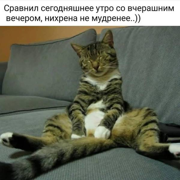 http://s7.uploads.ru/t/RJQnH.jpg