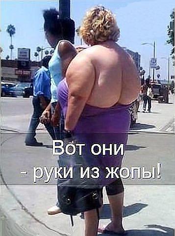 http://s7.uploads.ru/t/RhBAj.jpg