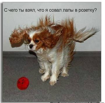 http://s7.uploads.ru/t/RiHSw.jpg