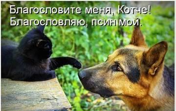 http://s7.uploads.ru/t/SibPv.jpg