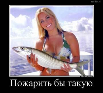 http://s7.uploads.ru/t/Sw1NC.jpg