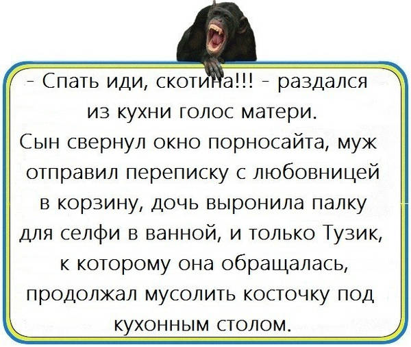 http://s7.uploads.ru/t/T1n0e.jpg