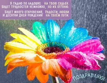 http://s7.uploads.ru/t/THist.jpg
