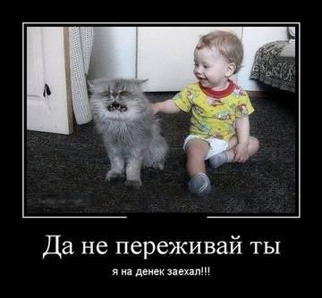 http://s7.uploads.ru/t/TIQdw.jpg