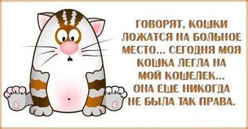 http://s7.uploads.ru/t/TLvJz.jpg