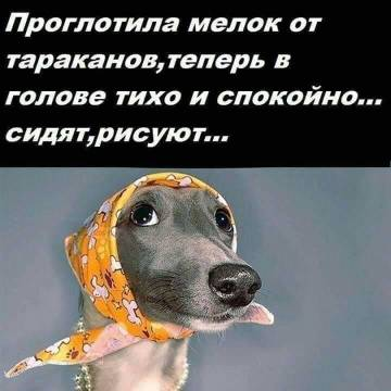http://s7.uploads.ru/t/TRsuz.jpg