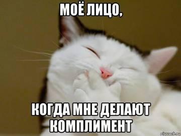 http://s7.uploads.ru/t/TWRI7.jpg