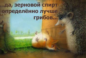 http://s7.uploads.ru/t/TWj48.jpg