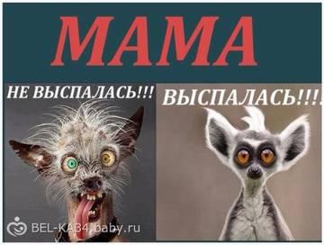 http://s7.uploads.ru/t/TkEl9.jpg