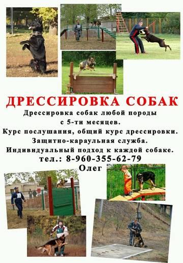 http://s7.uploads.ru/t/U4HoC.jpg