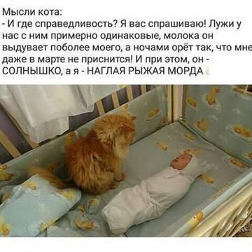 http://s7.uploads.ru/t/V0eED.jpg