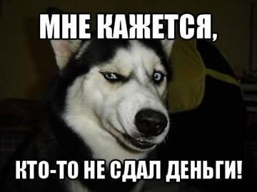 VMfSL.jpg