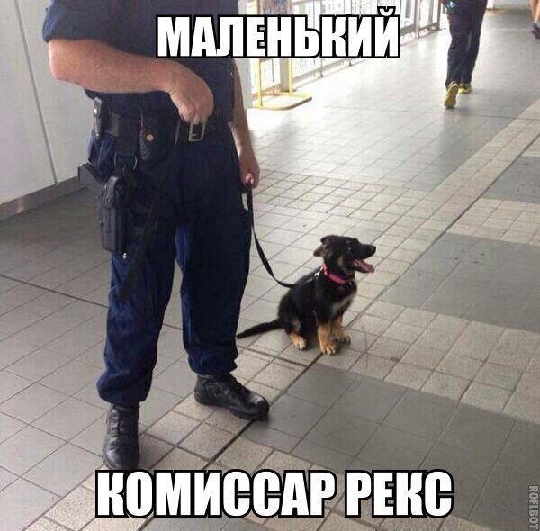 http://s7.uploads.ru/t/Vyn8p.jpg